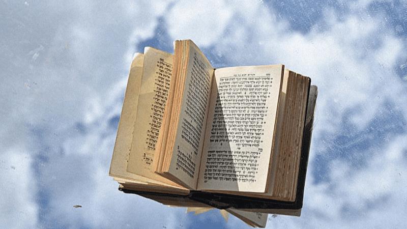 """Рав Пинхас Вышедски   """"Ноах – праведный в своих поколениях…"""""""