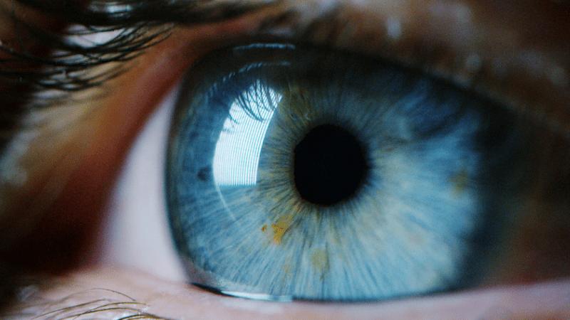 Ханука – праздник зрения
