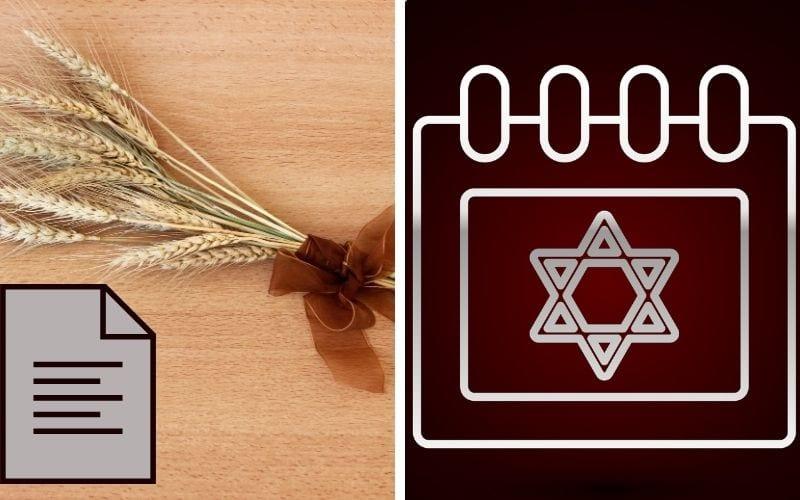 Союз омера Тайна еврейского года Рав Шнайдер