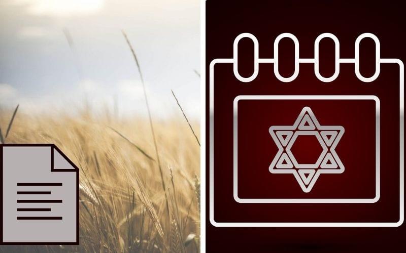 Дочери Моава и Бааль-Пеор Тайна еврейского года