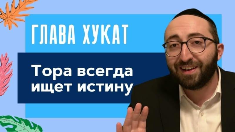 🌟 Недельная глава Хукат. Тора всегда ищет истину   Моше Питимашвили
