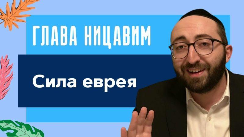 💪 Сила еврея. Недельная глава Ницавим 5781 | Моше Питимашвили