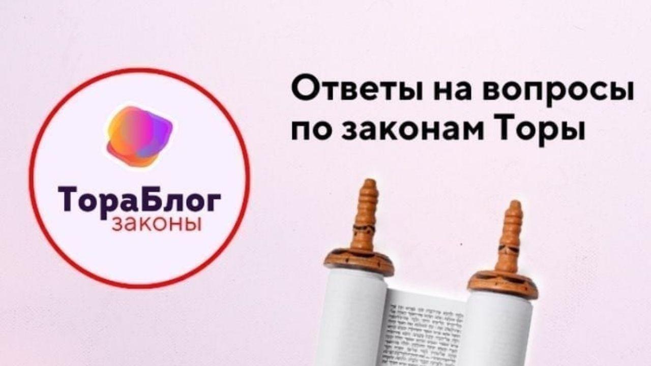 ТораБлог Прузбуль Ответы на вопросы