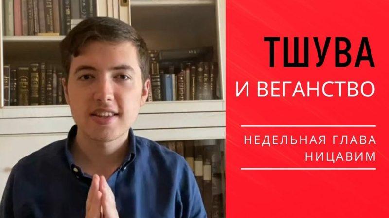 🙏 Тшува и веганство. Недельная глава Ницавим | Элишама Пинтосевич