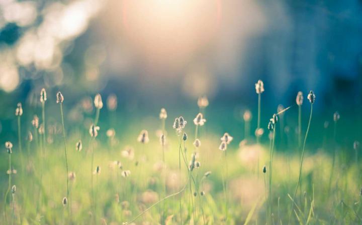 Какие молитвы читать за выздоровление больного?