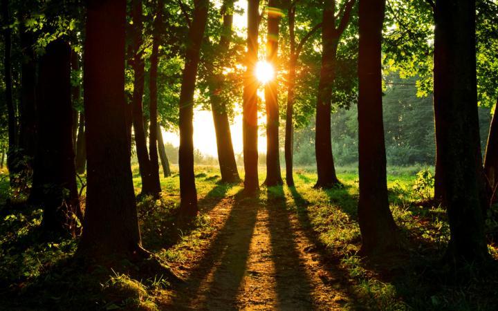 Как встретить старость успешным и мудрым?