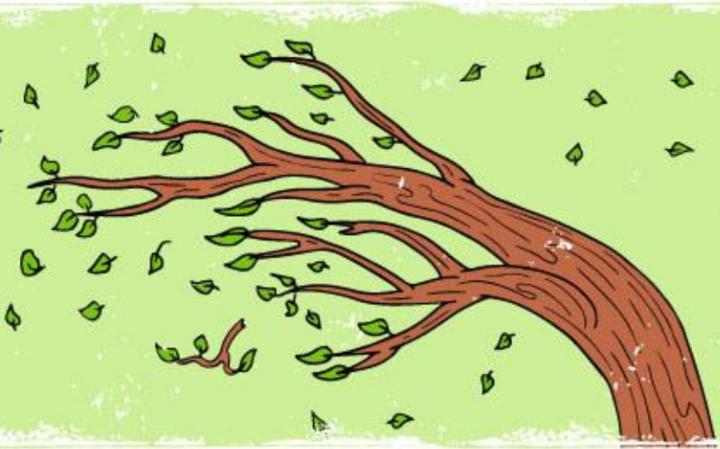 Деревянный – значит эмоциональный