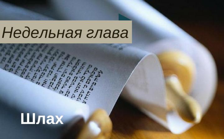Недельная глава Шлах | О различии подходов к раскаянию