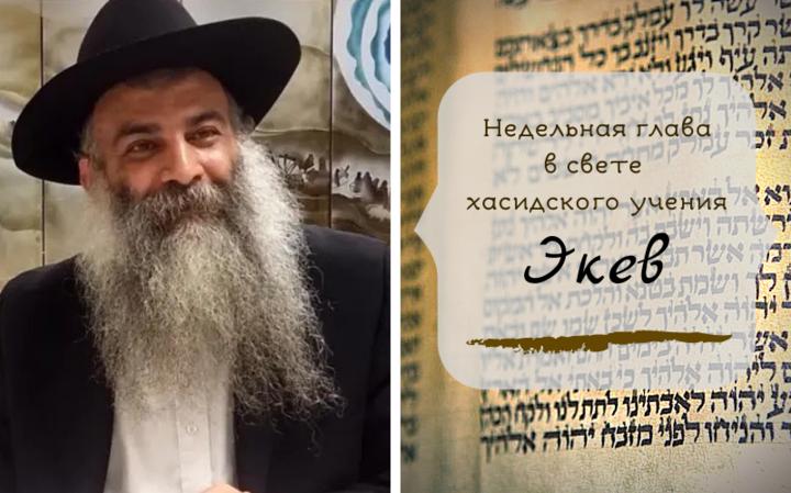 Недельная глава в свете хасидского учения   Экев. Часть 1