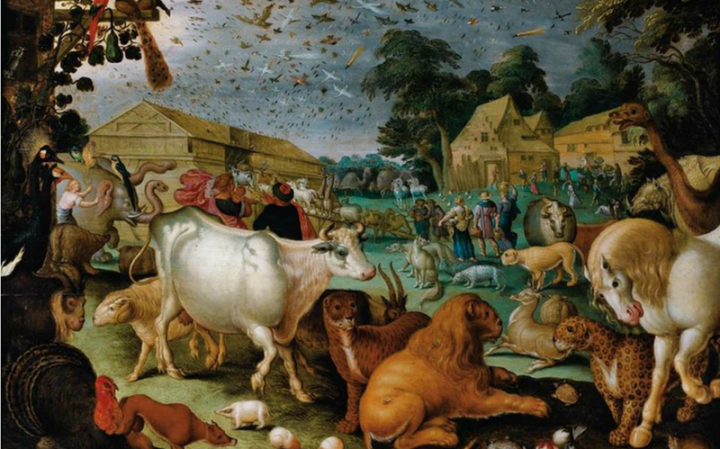 Чему учит нас глава Ноах? Как найти внутренний покой и утешение