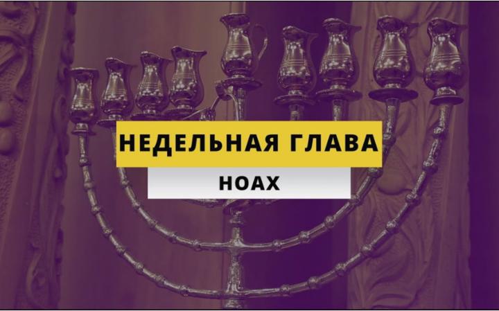 Рав Элазар Нисимов. Недельная глава Ноах