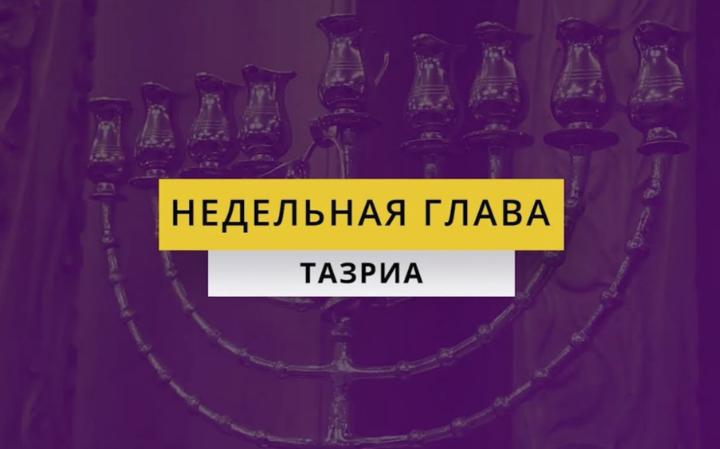 Рав Элазар Нисимов. Недельная глава Тазриа