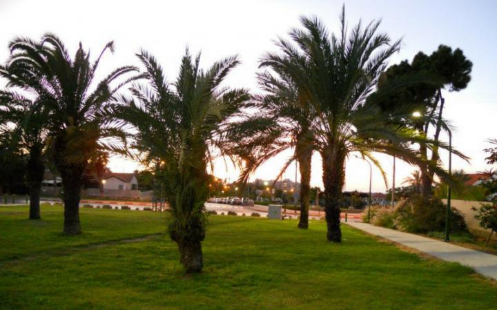 Встреча в Ашкелоне