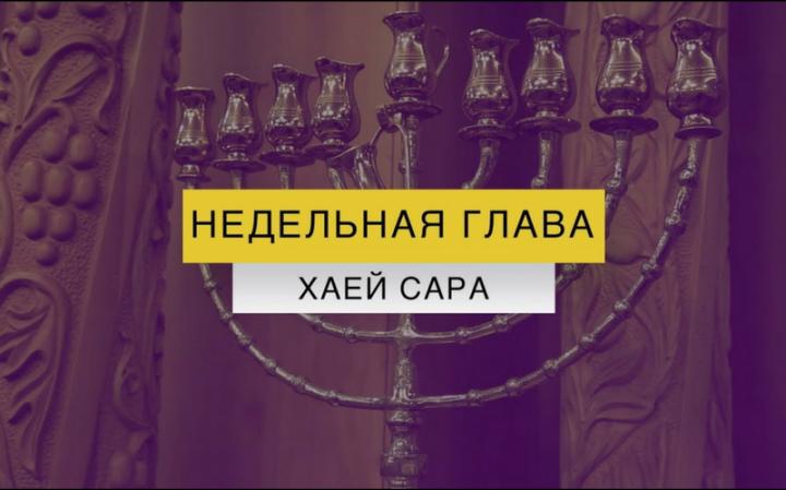 Рав Элазар Нисимов. Недельная глава Хаей Сара   Почему в мире нет абсолютного счастья? К чему приводит воровство