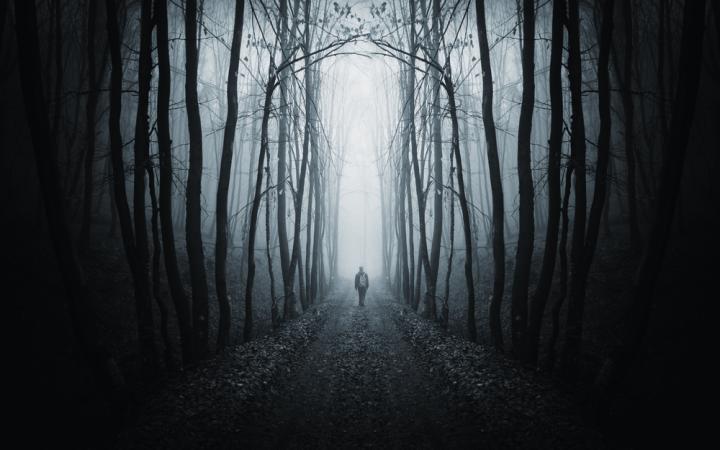 Тьма и свет в жизни человека