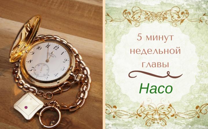 5 минут недельной главы | Глава Насо