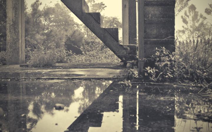 Природа и чудо — два вида управления