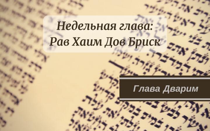 Недельная глава Дварим | «Помысли о годах всех поколений»