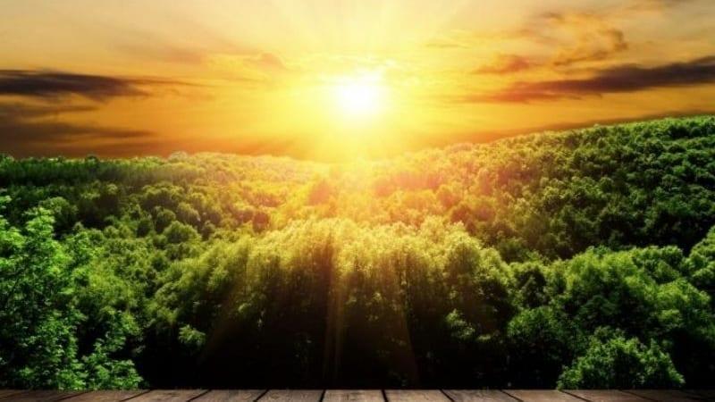Какая главная цель всего Творения?