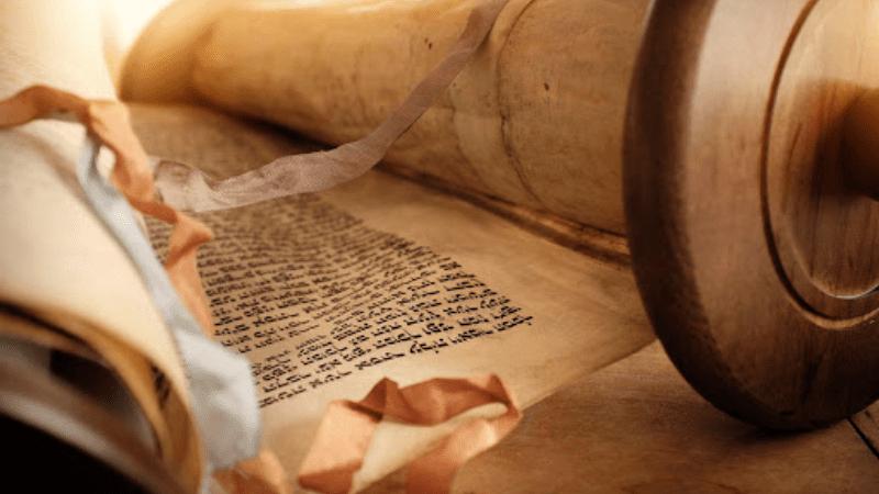 Спасти мир добрым словом   Недельная глава Торы «Ноах»