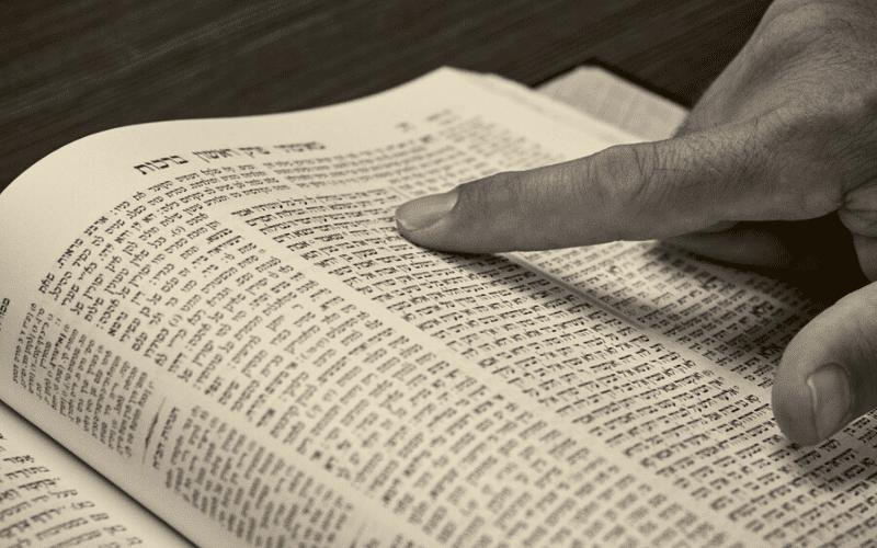 Два врага | Недельная глава Ваишлах