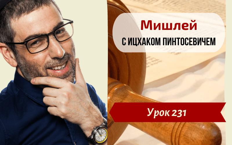 Новый Цикл Изучения Мишлей (Притчей Царя Соломона) | Урок 231. Глава 21, отрывки 30-31