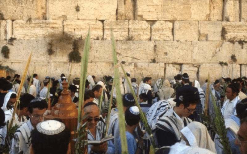 Порядок Хошанот в дни Суккот