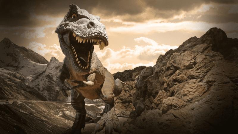 Недельная глава Ноах | Мир Реэмов — Динозавров