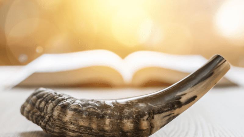 Рав Залман Стамблер о празднике Йом Кипур — Часть 2