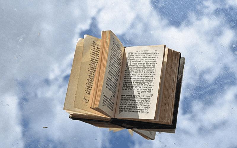 Рав Пинхас Вышедски | «Ноах — праведный в своих поколениях…»