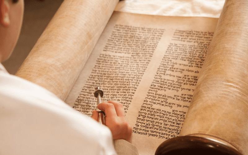 Недельная глава Ноах | Ид, эго и супер-эго