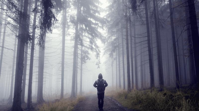 Недельная глава Ваешев | Встреча Йосефа и встреча Яакова