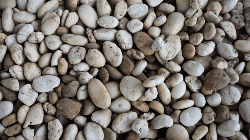 Не давайте нищим камни! | Совет Ребе РаШаБа хасиду