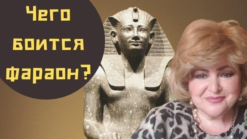 Чего боится фараон? | Бабушка Соня рассказывает