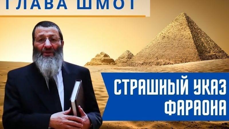 Страшный указ фараона. Недельная глава Шмот | Рассказывает рав Цви Патлас