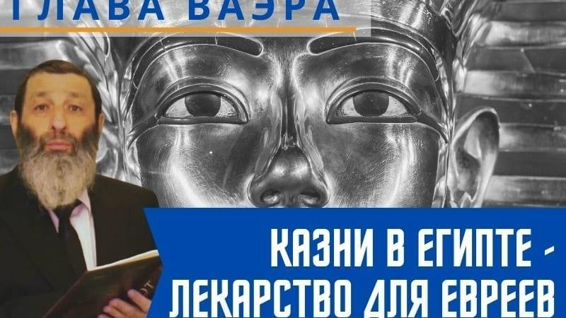 Казни в Египте — лекарство для евреев. Недельная глава Ваэра | Рассказывает рав Цви Патлас
