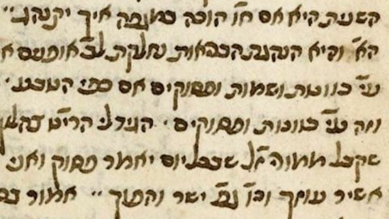 Найден древний манускрипт рава Хаима Виталя с советами по борьбе с эпидемией