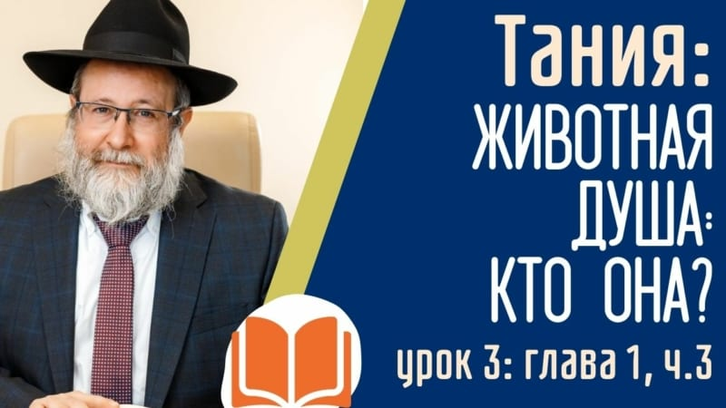 ТАНИЯ: У каждого еврея две души. Животная душа — кто она? Урок 3: Глава 1, часть 3 | Рав Лирон Эдери