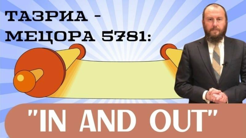 In and Out. Тазриа — Мецора 5781 | Недельная глава с равом Альтшулем
