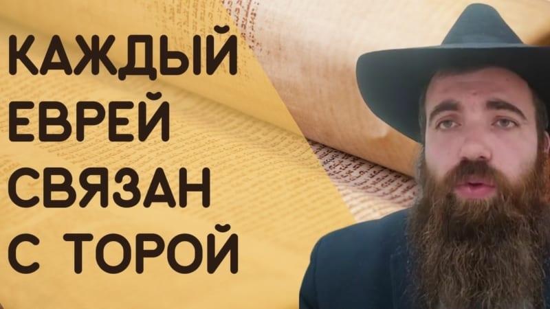 🕍 Недельная глава Бемидбар. Каждый еврей связан с Торой | Рав Шмуэль Карнаух
