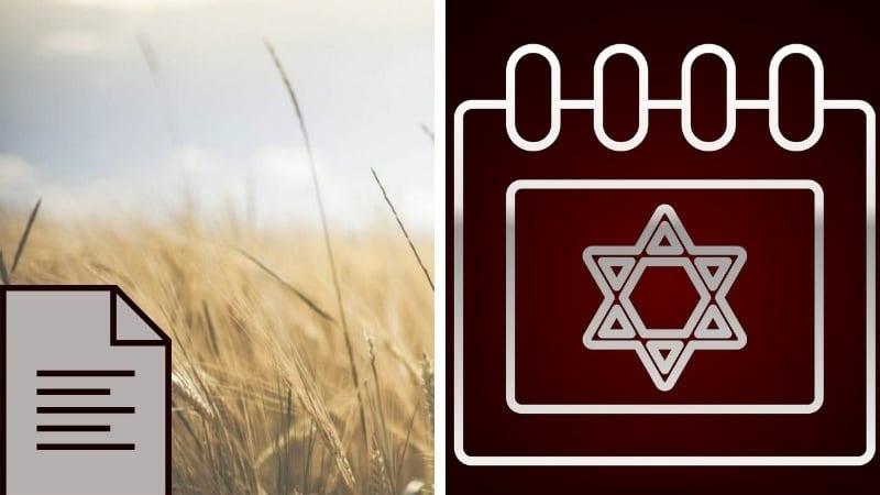🙌 Дочери Моава и Бааль-Пеор – последнее испытание перед приходом Машиаха | Из книги «Тайна еврейского года»